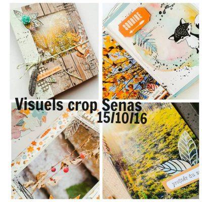 Crop à Senas + visuel et Salon Scrap'Ain