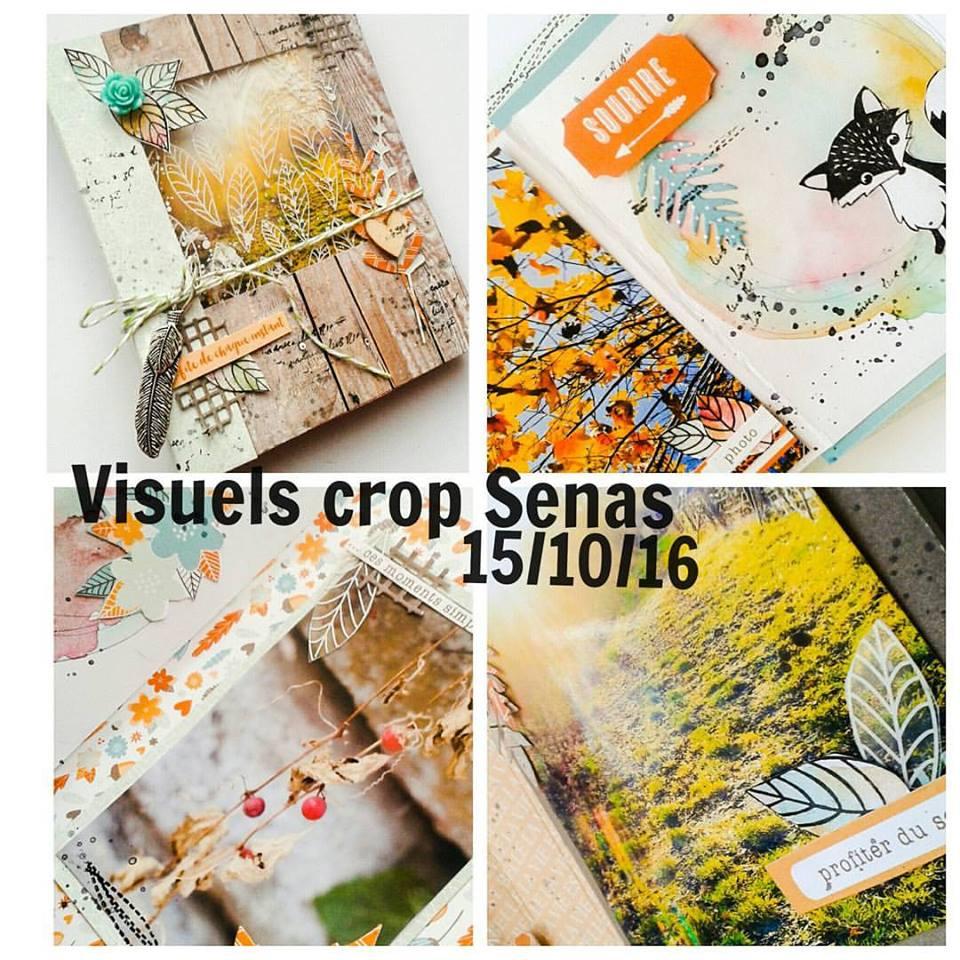 visuel-crop