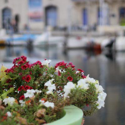 un petit tour à Marseillan…part 2