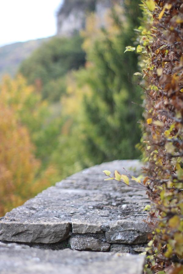 3 astuces pour photographier l'automne